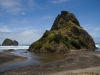 piha-back-of-lion-rock