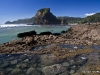 Piha Rock Pools