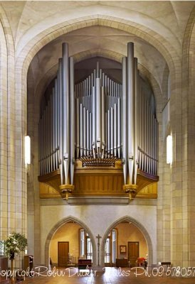 auckland-cathedral-organ