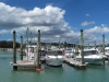 hobson-bay-boating-panorama