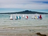 Summer Sails & Rangitoto Island